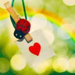 Love bringer