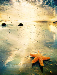 By sea by EliseEnchanted