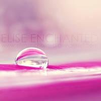 Sweets by EliseEnchanted