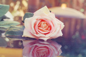 For you by EliseEnchanted