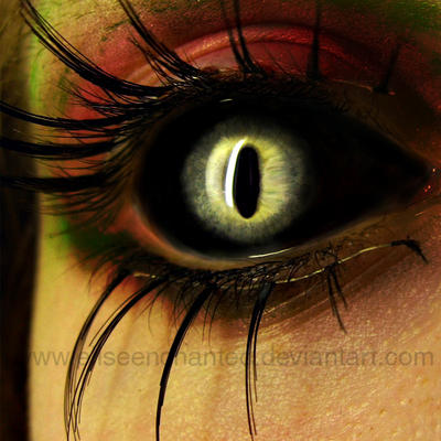 Tarantula by EliseEnchanted