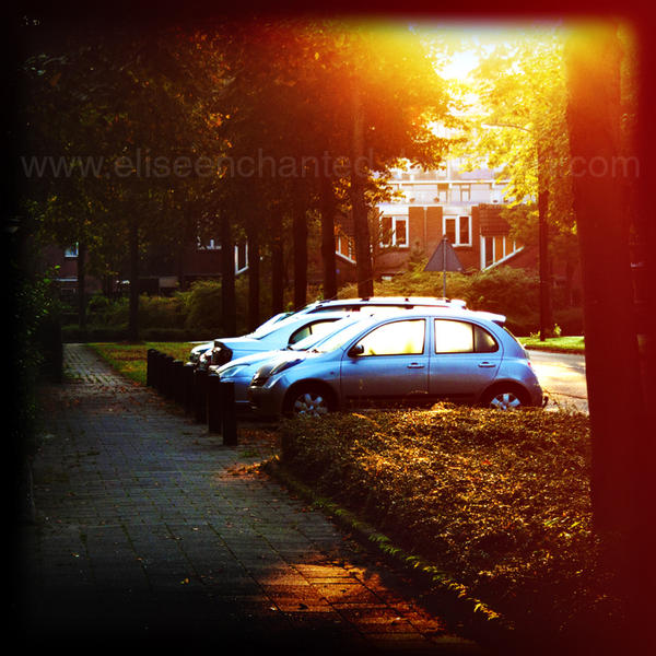 Morning sun by EliseEnchanted