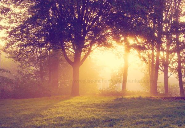 Morning Glory by EliseEnchanted