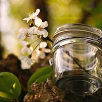 Spring feeling by EliseEnchanted