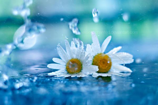 Splash by EliseEnchanted