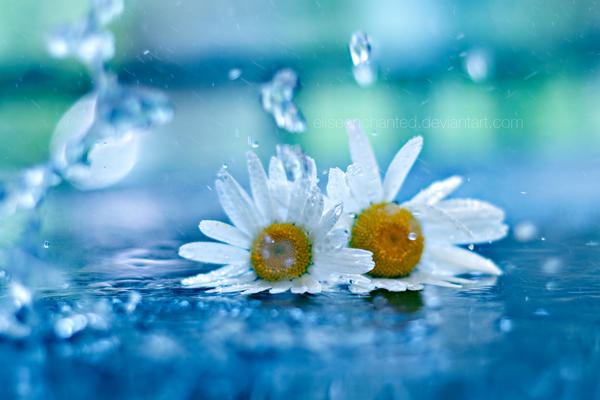 Splash By EliseEnchanted On DeviantArt