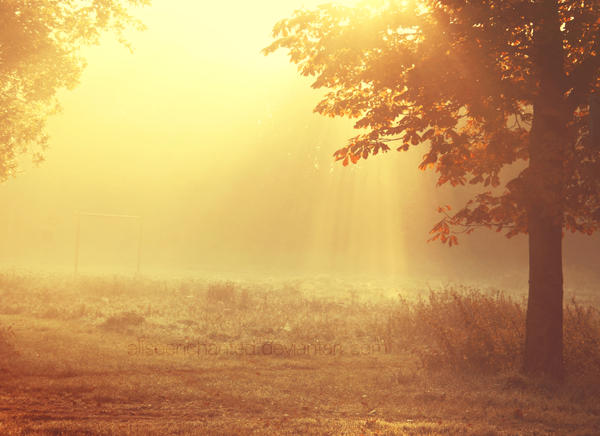 Hazy sunday by EliseEnchanted