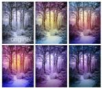 Enchanting snow actions