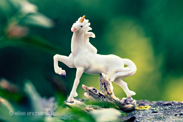 My very own unicorn by EliseEnchanted