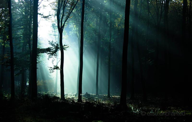 Last light by EliseEnchanted