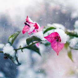 Frozen life by EliseEnchanted