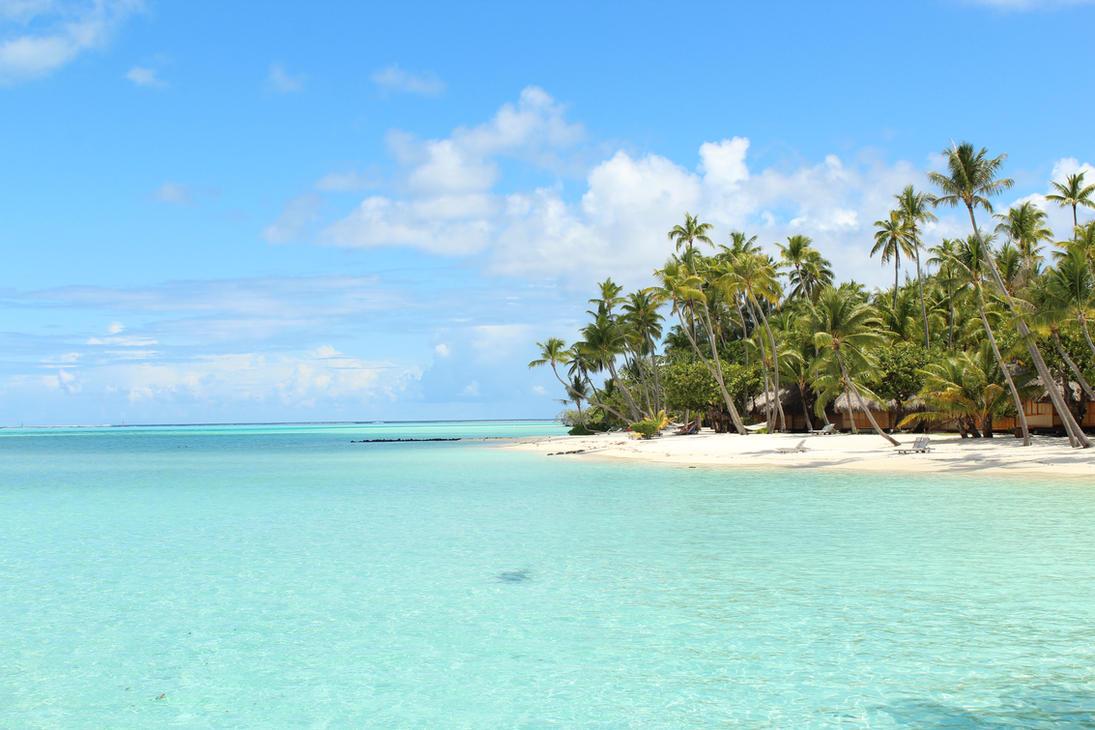tropical paradise by glaerkasterin