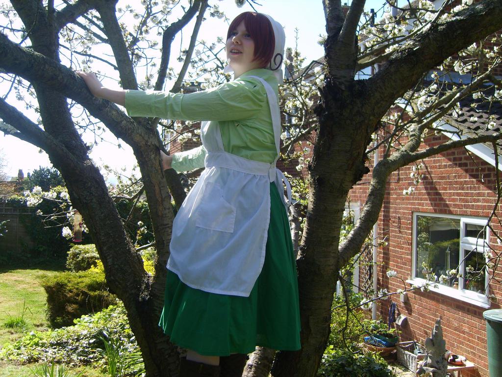 Hetalia Chibitalia: tree climbing by GXGIRL-93