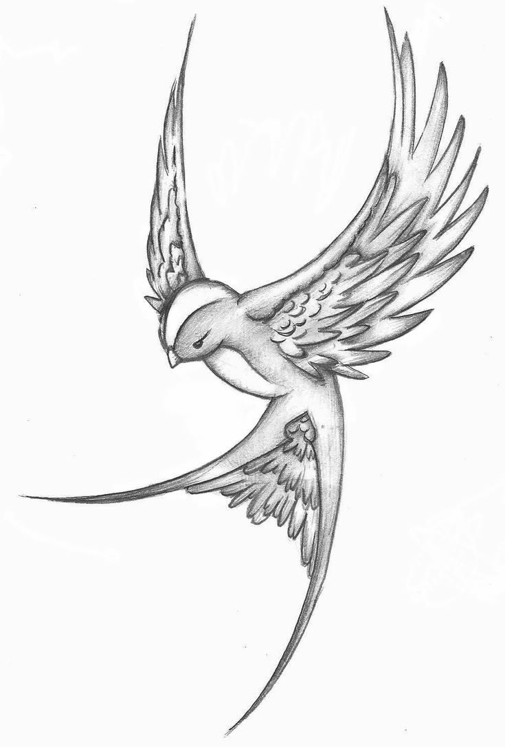 New Bird Sketch By 05na On Deviantart