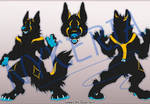 Black and Gold Adopt (Sold)