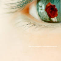 rosesrred. by JeanFan