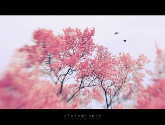 birds of the summer by JeanFan