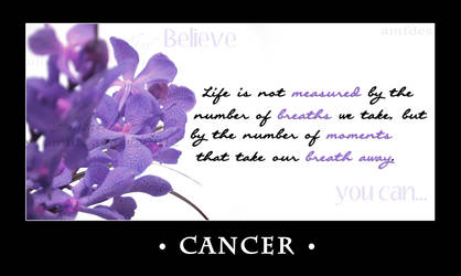 Cancer Entry #2 RFL 2012 by AMFdesigns