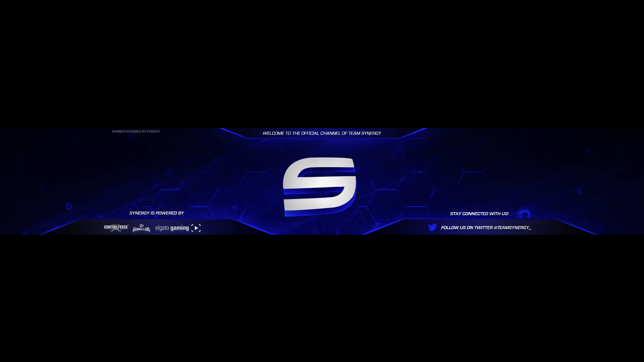 Team Synergy You Banner 2017 By