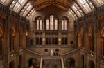 Darwin's Cathedral by Rubengda
