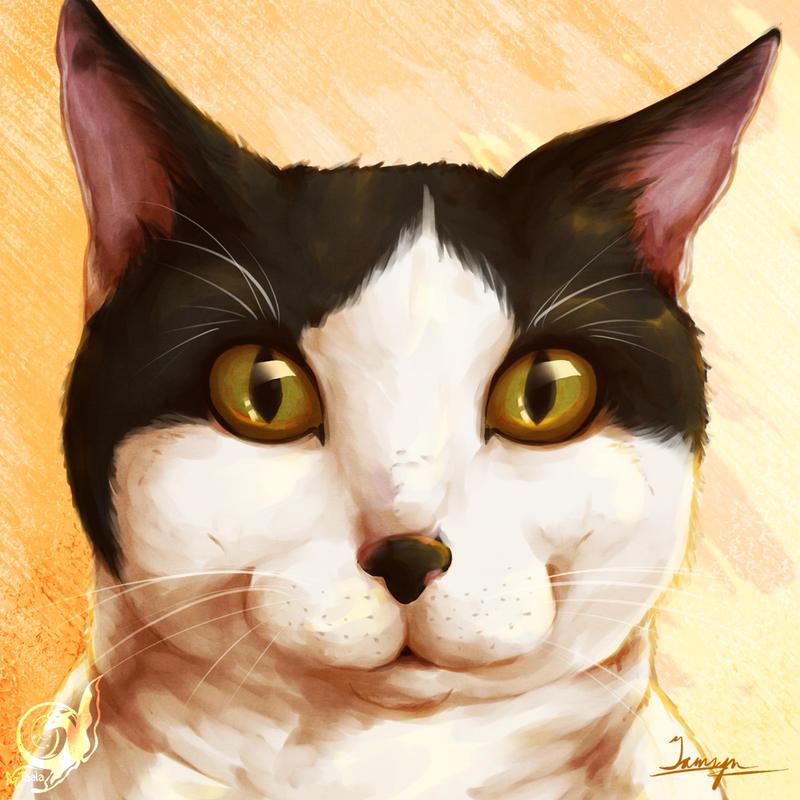 Shy - Kitty Icon by taalaruhun