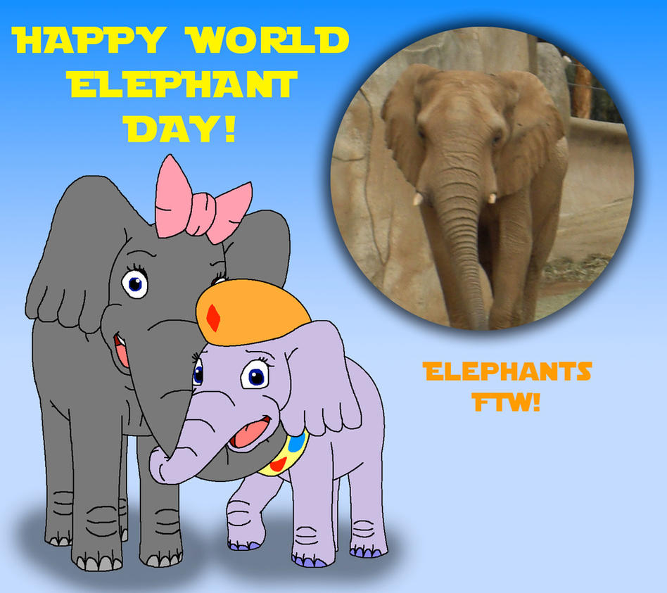 Image result for world elephant day images