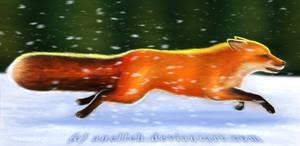Runing fox