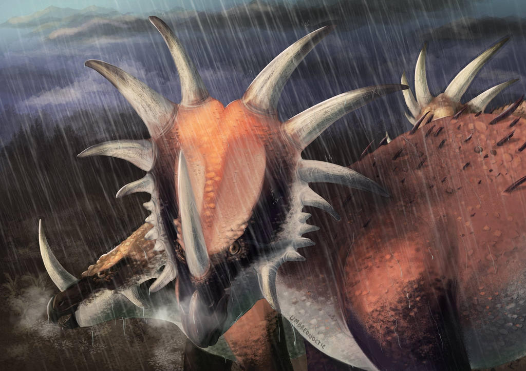 Styracosaurus and rain by UmbreoNoctie