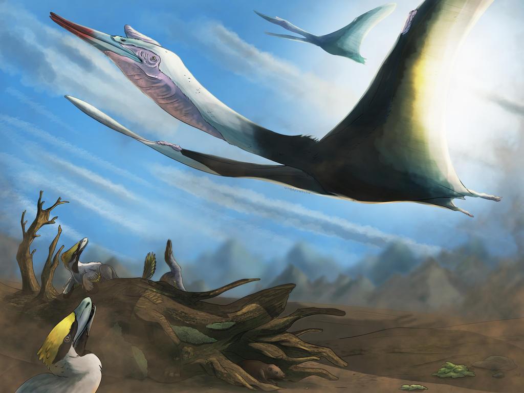 Flying Girafe by UmbreoNoctie