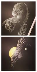 White on black practise by UmbreoNoctie