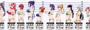 Maken Ki  Bust Chart By Juanka1 D9chnhw