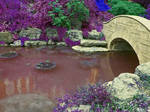 Violet Valley