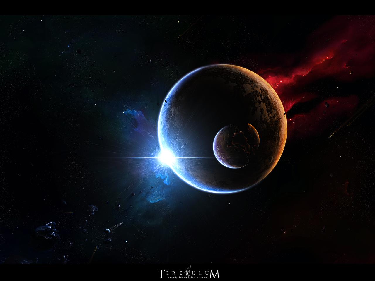 Terebulum by Lyridae