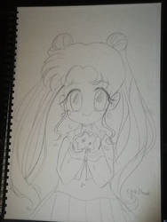 Usagi fan art ( I have just watch the episode one) by CyaBook