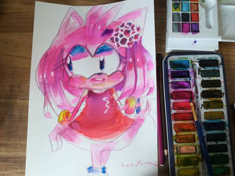 Amy Rose with Rose on the hair.  by LunMermaid