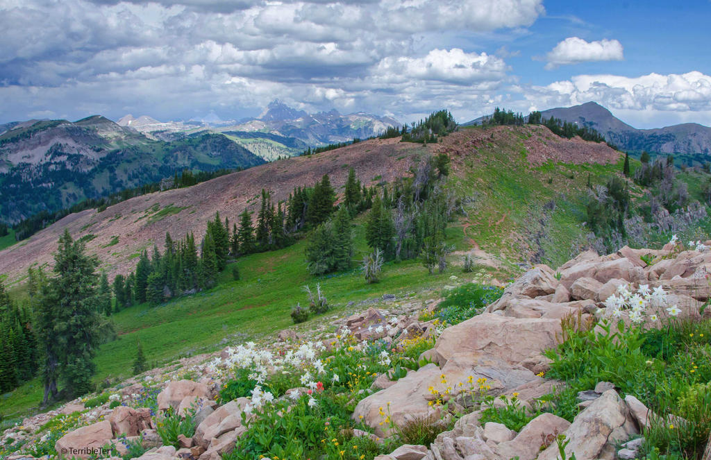A Teton Tramp's View by TerribleTer