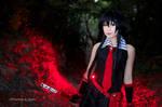Akame - Akame Ga Kill ! cosplay