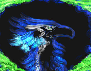Seahawks speedpaint by BahamutDeusModus