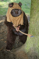 Wicket - the Ewok by Etienne-Magique
