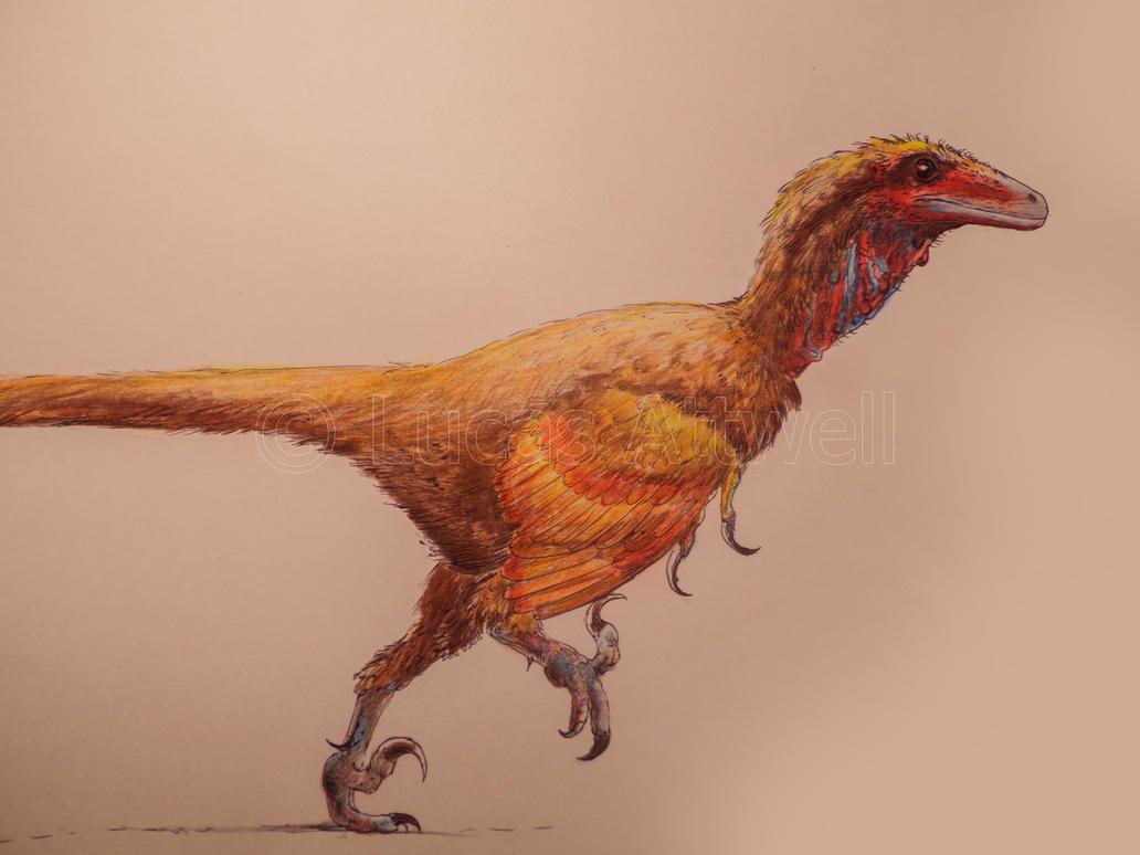 Deinonychus by Lucas-Attwell