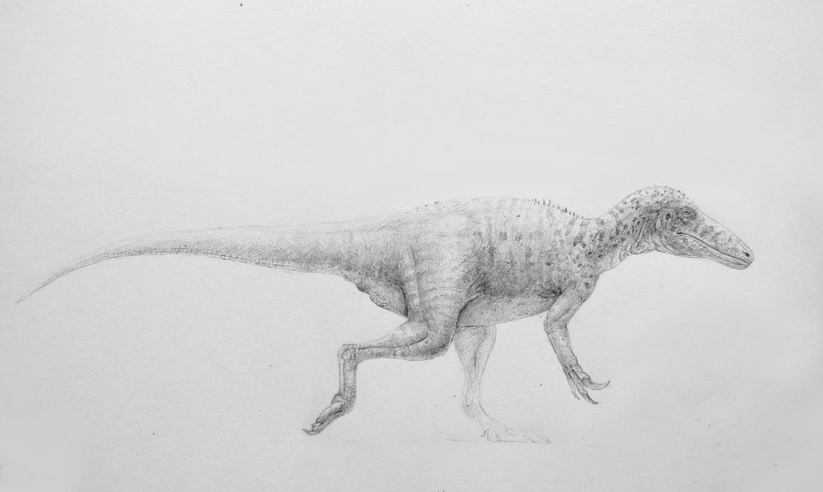 Generic megaraptoran by Lucas-Attwell