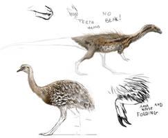Practice: Chilesaurus and Darwin's Rhea.