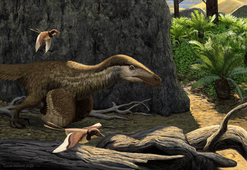 Velociraptor and Gobipteryx