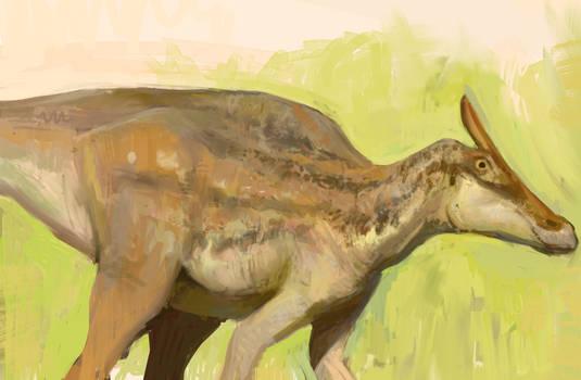 Hadrosaur sketch