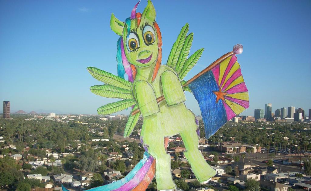 Zoney Pony