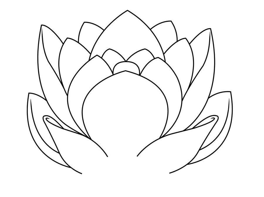Line Drawing Lotus : Lotus line art