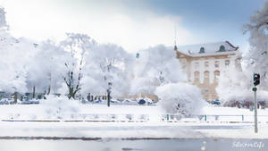 Berlin Palast snow