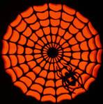 Spider web pumpkin by kenklinker