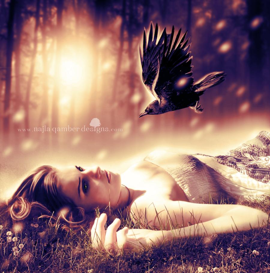 meadow by NajlaQamber