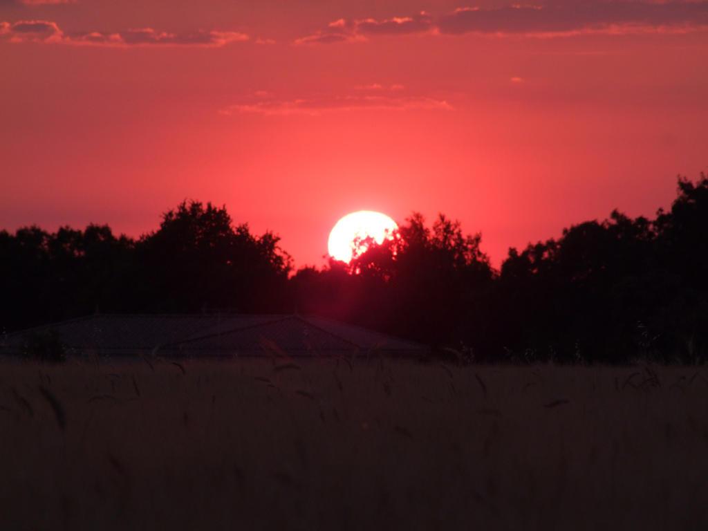 Sunset by Ilora24